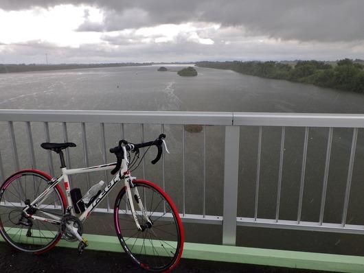 篠突く雨の自転車通勤