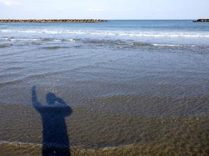 遠浅の海岸