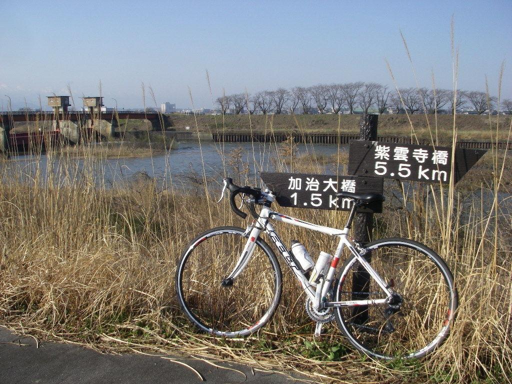 自転車通勤11~12回 加治川 亀田 ...