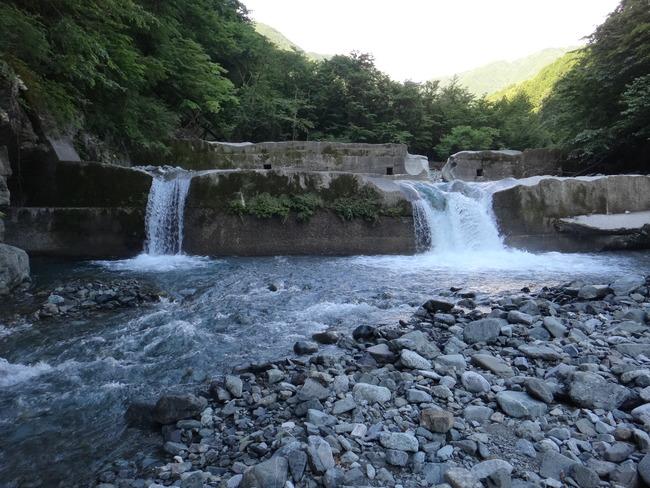 丹沢 神ノ川 岩魚 釣り テンカラ