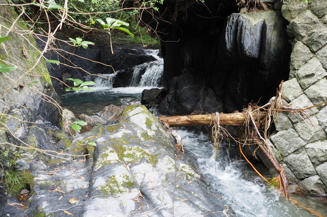 某渓流 正影グラス MG50-MLC 渓流ベイト ヤマメ