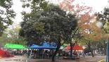 Baidu IME_2014-11-9_11-43-58