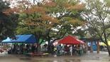 Baidu IME_2014-11-9_11-46-36