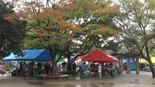 Baidu IME_2014-11-9_11-42-26