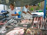 マルタ魚市