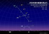 木製金星03132012a