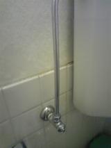 トイレ掃除08202010C