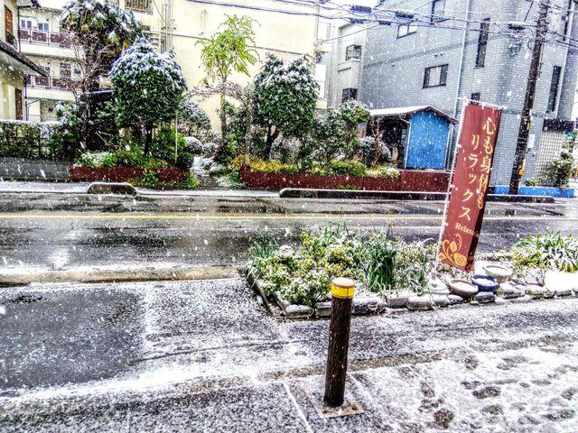 東川口Te-Te雪の日