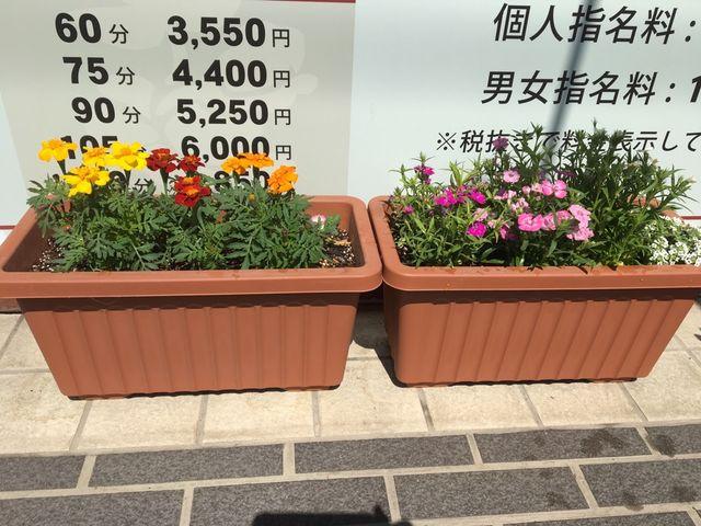 東川口Te-Te_5662