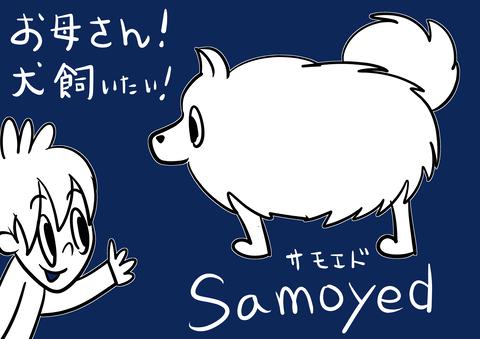 Saltbox_00180