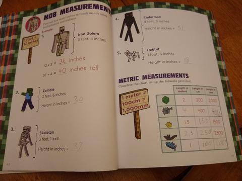 minecraftbook1