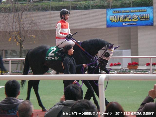 20111203鳴尾記念ショウナンマイティ