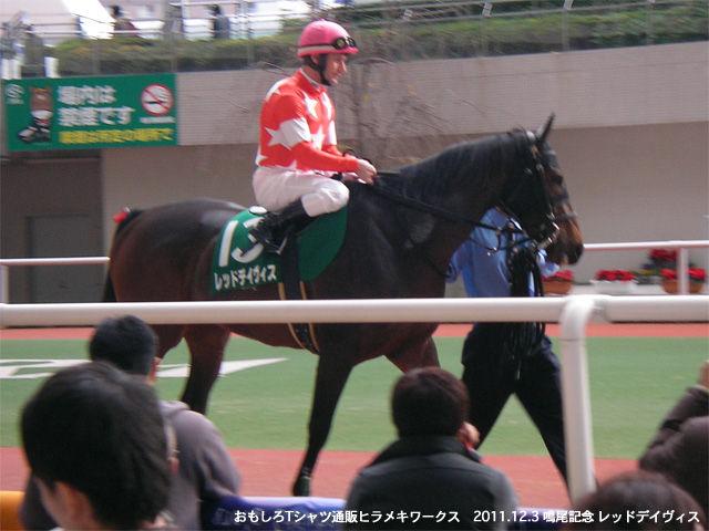 20111203鳴尾記念レッドデイヴィス