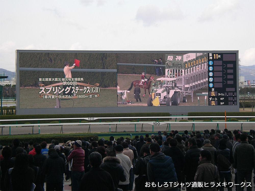 2011年3月26日阪神競馬場、東北関東大震災被災地支援競馬スプリングステークス(G2)