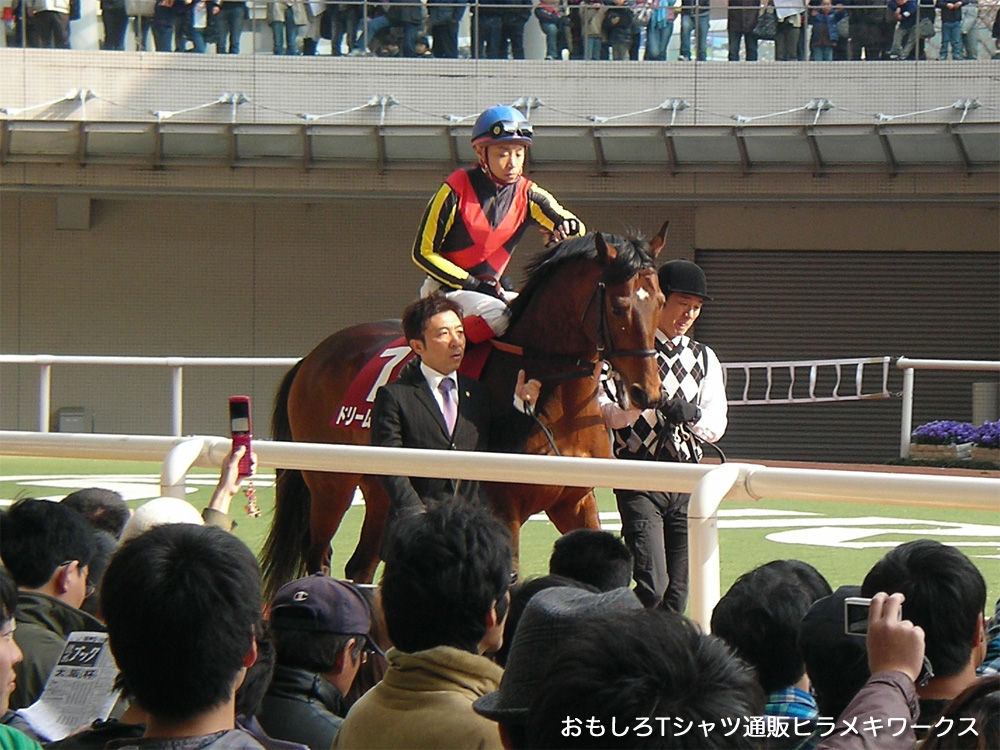 2011年4月3日阪神競馬場、産経大阪杯のドリームジャーニーと池添騎手