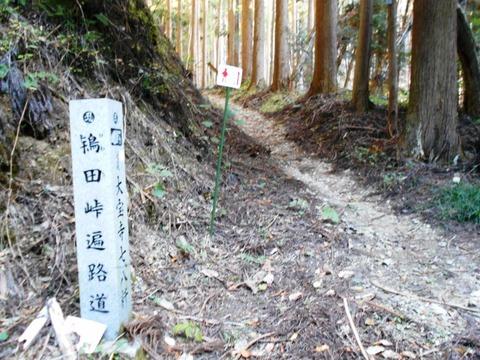 44番への道(ひわた峠2)