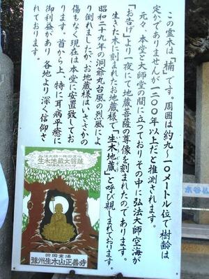 生木地蔵3