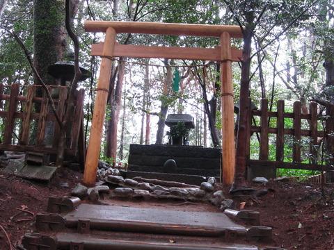 2012年3月屋久島&九州旅行 085