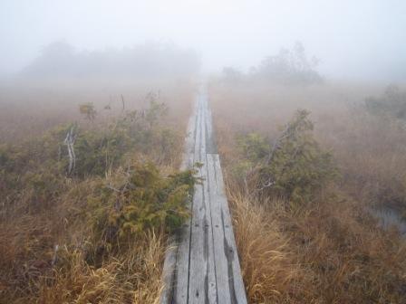 八丁の湯と鬼怒沼湿原 016