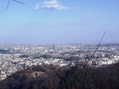 高尾山2014初詣 015