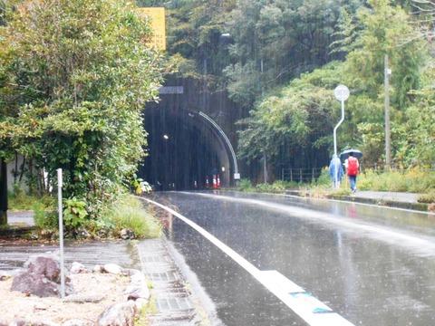 38番への道(伊豆田トンネル)