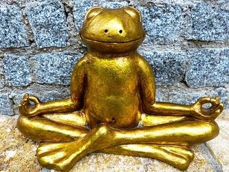 瞑想カエル