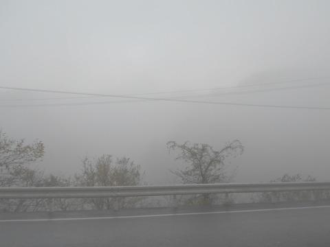 別格20への道(朝霧)