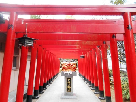 田村神社赤鳥居が並ぶ