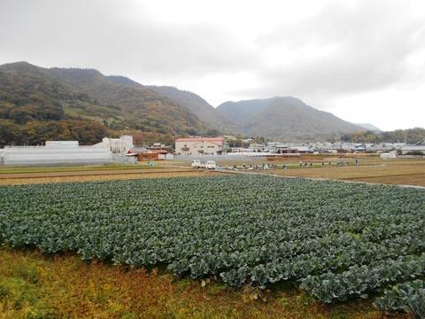 本山寺への道3