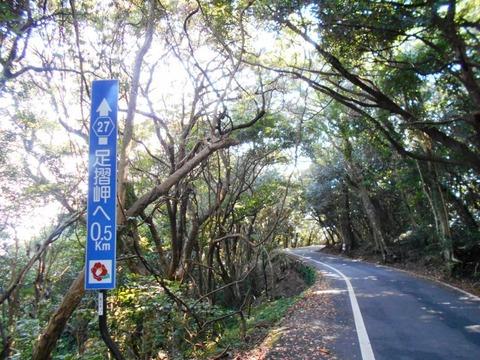 38番への道(足摺岬へ0.5キロ)