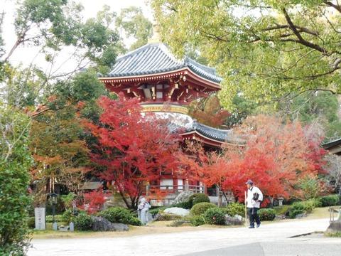 霊山参り(6番の多宝塔)