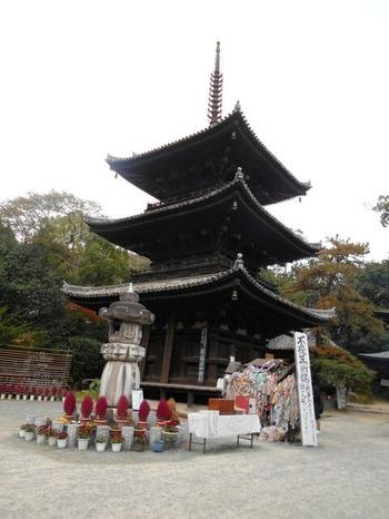 51番石手寺(三重塔)