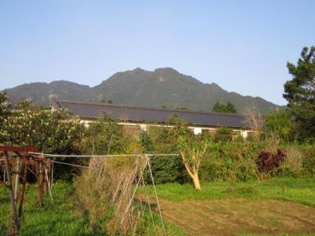 2012年3月屋久島&九州旅行 021
