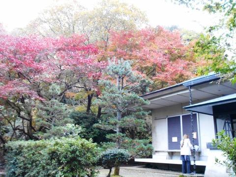 香園寺奥の院3