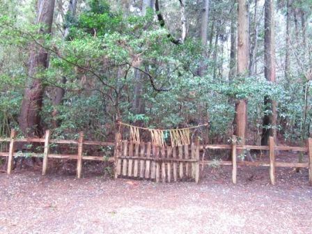 2012年3月屋久島&九州旅行 084