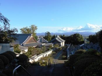5番への道(風景)
