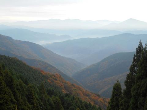 雲辺寺への道(雲海)
