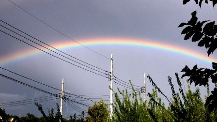 虹をわたって 001