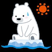 流氷に乗った白熊