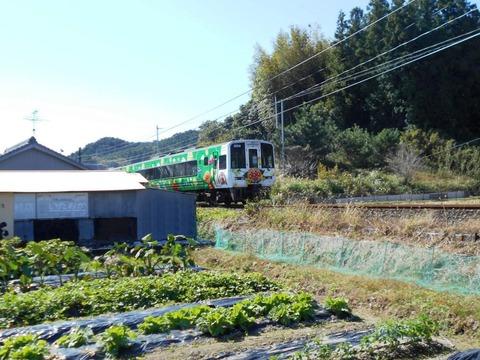 37番への道(土讃線)
