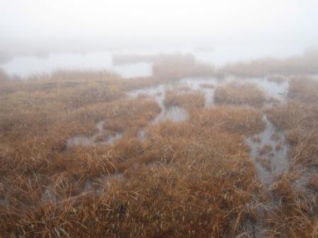 八丁の湯と鬼怒沼湿原 017