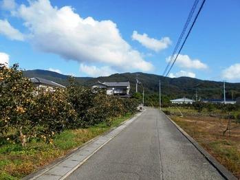 別格1番への道(畑)