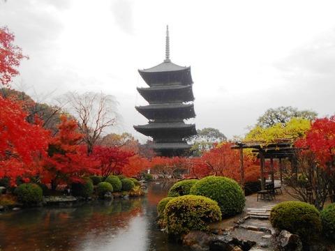 京都東寺1