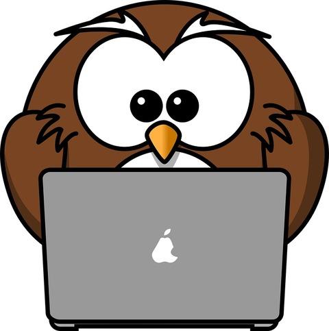 owl-158414_960_720