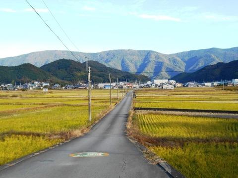 41番への道(三間盆地)