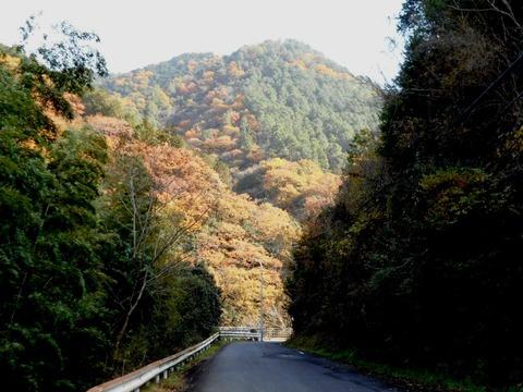 霊山参り(山の中の道)