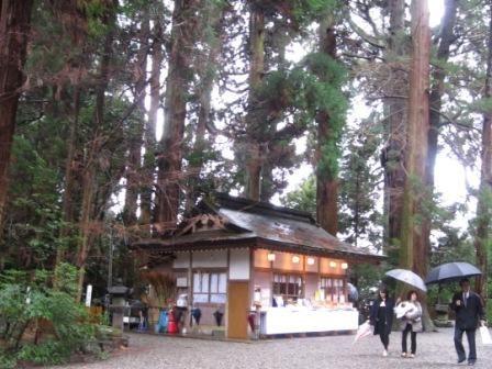 2012年3月屋久島&九州旅行 082