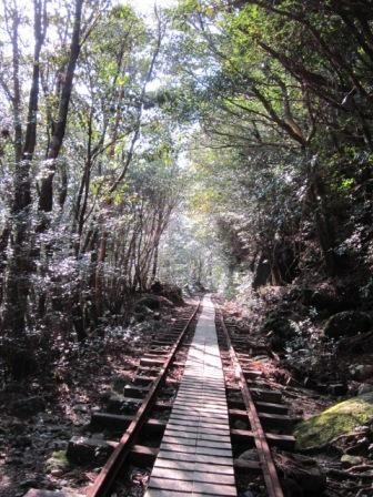 2012年3月屋久島&九州旅行 012