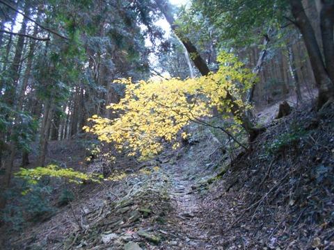 仙龍寺への道1