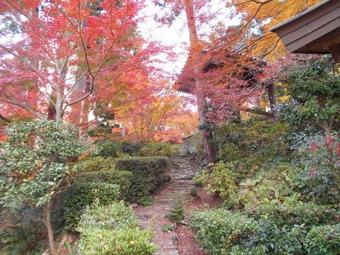 白峰寺霊廟への道